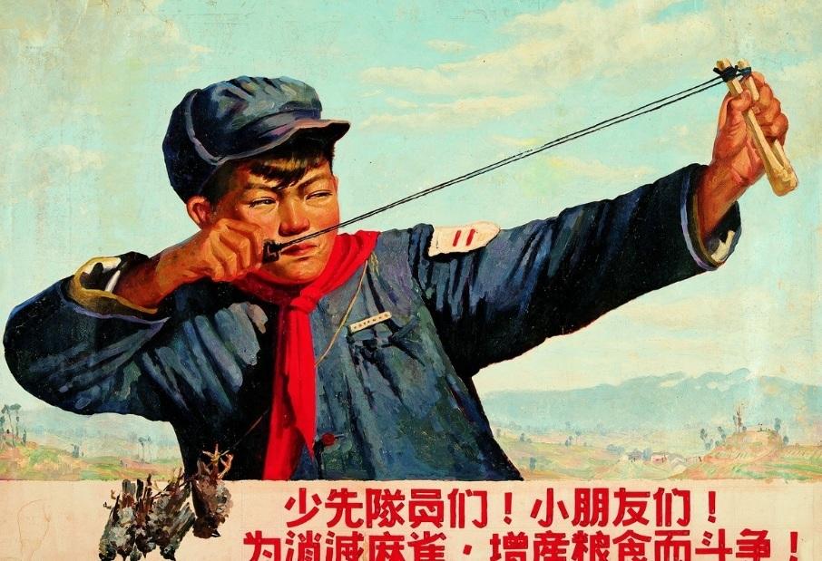 Как Китай с воробьями воевал